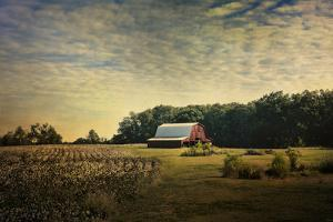 Red Barn at the Cotton Field by Jai Johnson