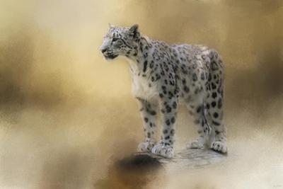 Snow Leopard by Jai Johnson