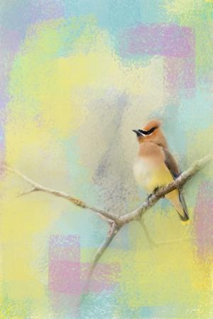 Song of the Waxwing