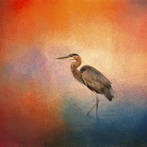 Sunset Heron by Jai Johnson