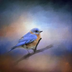 The Happiest Blue by Jai Johnson