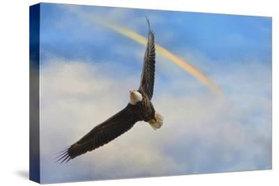 When My Wings Touch the Rainbow