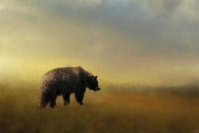 Where the Grizzly Roams by Jai Johnson