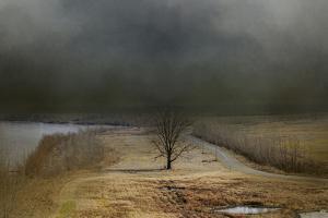 Winding Missouri Road by Jai Johnson