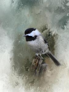 Winter Chickadee by Jai Johnson