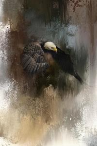 Winter Eagle 2 by Jai Johnson