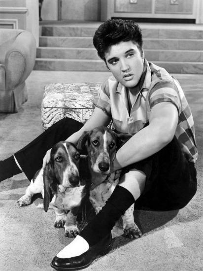 Jailhouse Rock, Elvis Presley, 1957--Photo