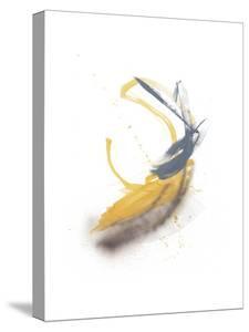 Goldenrod by Jaime Derringer