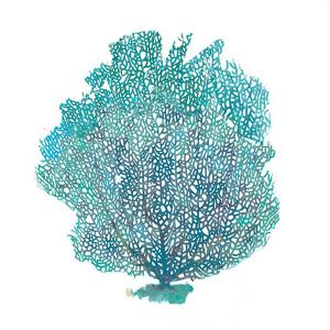 Teal Coral on White I by Jairo Rodriguez