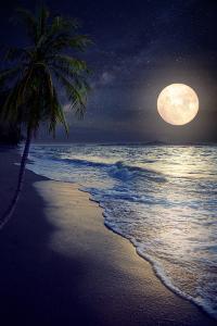 Beautiful Fantasy Tropical Beach with Milky Way Star in Night Skies, Full Moon - Retro Style Artwor by jakkapan
