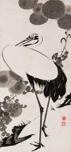 A Cranes Sumi on Paper 2 by Jakuchu Ito