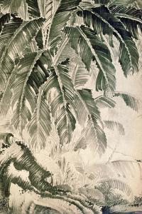 Palms Sumi on Paper by Jakuchu Ito