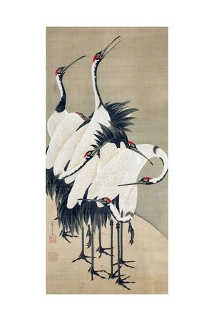 Seven Cranes