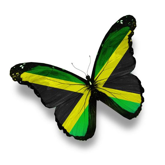 Jamaican Flag Butterfly Isolated On White Art Print Suns Luck Art Com