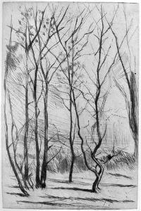 The Dam Wood, C1875 by James Abbott McNeill Whistler