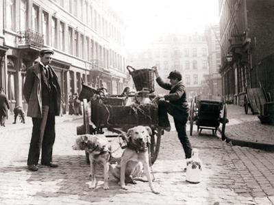 Boy with Dogcart, Antwerp, 1898 by James Batkin
