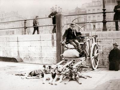 Man with Dogcart, Antwerp, 1898 by James Batkin