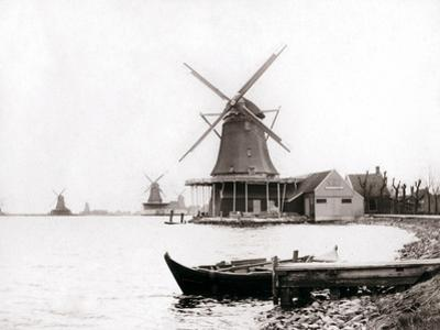 Windmills, Laandam, Netherlands, 1898 by James Batkin