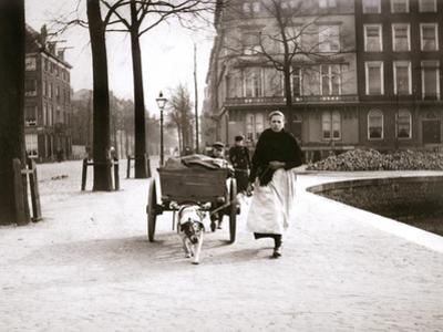 Woman with Dogcart, Rotterdam, 1898 by James Batkin