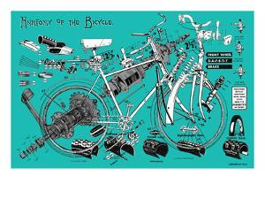 Anatomy of a Bicycle by James Bentley