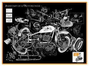 Anatomy of a Motorcycle by James Bentley