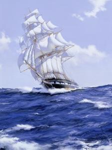 The 'John Bright', 2006 by James Brereton