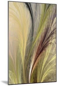 Fountain Grass I by James Burghardt