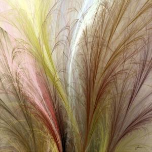 Fountain Grass II by James Burghardt