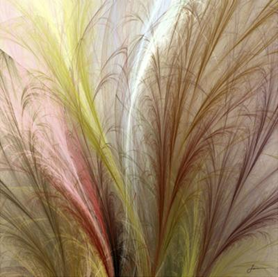 Fountain Grass II