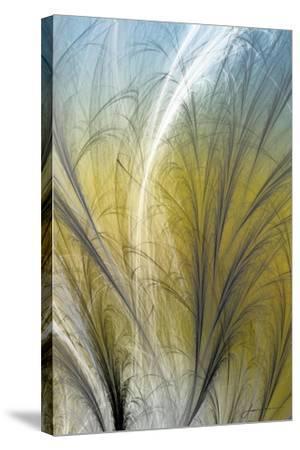 Fountain Grass III