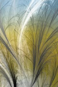 Fountain Grass III by James Burghardt