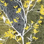 Moon Flowers II-James Burghardt-Art Print