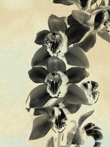 Orchid Blush Panels IV by James Burghardt