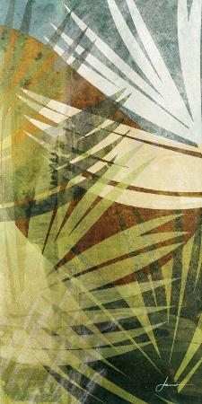 james-burghardt-palm-frond-ii