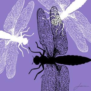 Pop Fly V by James Burghardt