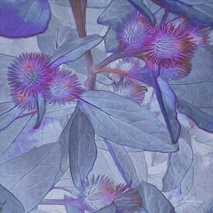Prickley Tiles IV by James Burghardt