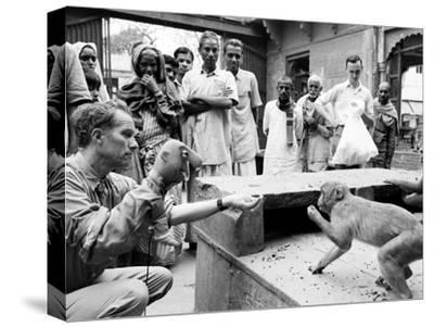 Puppeteer Bil Baird playing with a monkey, March 1962.