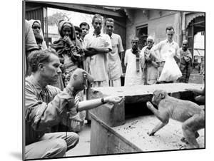 Puppeteer Bil Baird playing with a monkey, March 1962. by James Burke