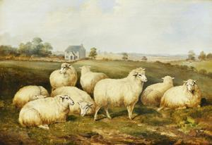 Sheep in a Meadow by James Charles Morris
