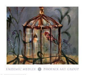Endemic Medley I by James Elliot