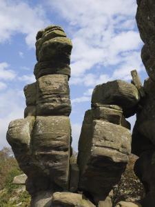 Brimham Rocks, Brimham Moor, Near Ripon, North Yorkshire, England, United Kingdom, Europe by James Emmerson