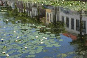 Canal Scene with Reflections and Floating Lilies, Delft, Holland, Europe by James Emmerson
