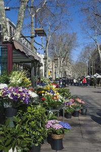 Flower Stall on Las Ramblas, Barcelona, Catalunya, Spain, Europe by James Emmerson