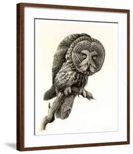 Great Grey Owl by James Fenwick Lansdowne