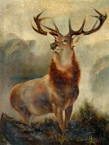 Stag At Bay by James Ford