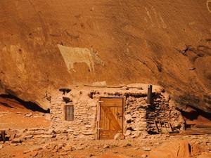 Ancient Navajo Cliff Dwelling and Petroglyphs by James Forte