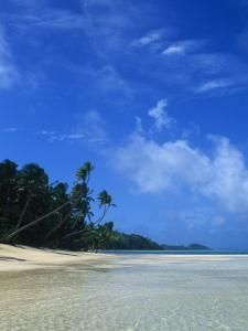 Deserted Beach with Palm Trees, Clear Water, White Clouds and Blue Sky by James Forte