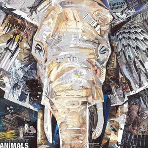 Elephants Gaze by James Grey