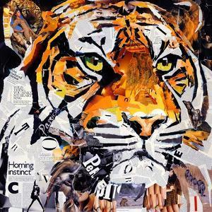 Hello Tiger by James Grey