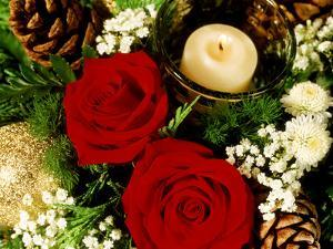 Christmas Arrangement of Two Red Roses with White Chrysanthemum by James Guilliam